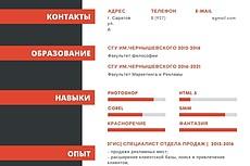 Дизайн резюме, оформление в pdf, jpg 11 - kwork.ru