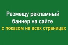 Лендинг на wordpress - с эффектами анимации к текстам, изображениям 12 - kwork.ru
