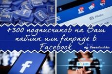 Добавлю 2000 вечных подписчиков на паблик в Facebook 7 - kwork.ru