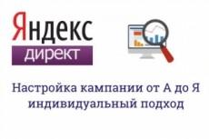 Профессиональная настройка Яндекс. Директ. Поиск, РСЯ 13 - kwork.ru