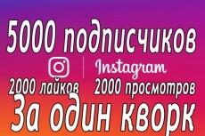 5000 подписчиков в Instagram. Также лайки, просмотры, комментарии 12 - kwork.ru