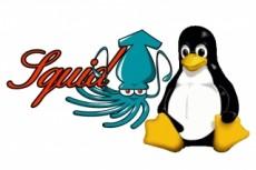 Администрирование Linux серверов 23 - kwork.ru