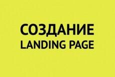 Сделаю лендинг пейдж под ключ 18 - kwork.ru