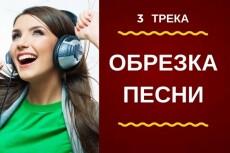 Обрежу любой участок аудиофайла 18 - kwork.ru