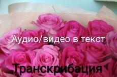 Транскрибация аудио или видео в текст 18 - kwork.ru