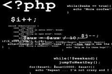 Напишу скрипт php, js 12 - kwork.ru