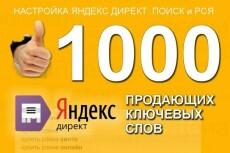 3 объявления-50 ключей РСЯ Яндекс Директ 19 - kwork.ru