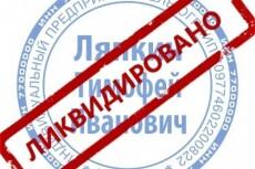 Проверка контрагента ИП 18 - kwork.ru