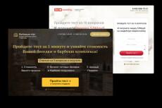 Landing Page, сайт-визитка под ключ 11 - kwork.ru