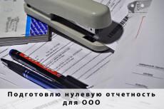 Подготовлю нулевую отчетность для ИП 24 - kwork.ru