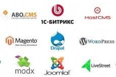 Окажу помощь с любой CMS 25 - kwork.ru