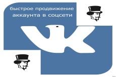 Оформлю аккаунты ВКонтакте быстро и дешево 10 - kwork.ru