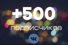 Вконтакте Друзья. Подписчики на аккаунт, профиль 500 человек 3 - kwork.ru