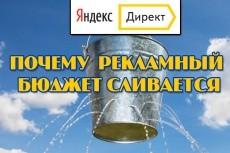 Аудит рекламной кампании Яндекс Директ 23 - kwork.ru
