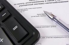 Составлю декларацию по УСН для ИП 8 - kwork.ru