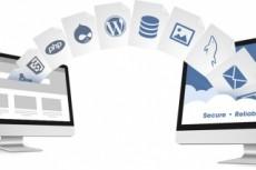 Перенесу один ваш сайт, с базой данных на ваш новый хостинг 7 - kwork.ru