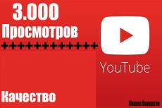 +2500 живых просмотров на видео YouTube 18 - kwork.ru