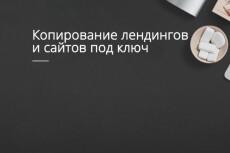Скопировать Landing page, одностраничный сайт, посадочную страницу 14 - kwork.ru