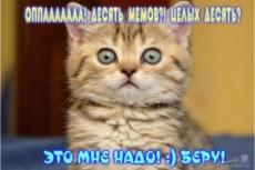Любой ваш текст, контент на фоне денег 19 - kwork.ru