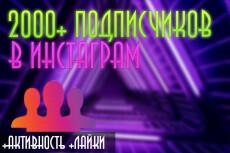 3000 Качественных Подписчиков Instagram плюс Лайки 14 - kwork.ru