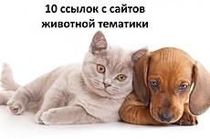 Ручное размещение ссылок бизнес тематики - высокий ИКС. Бонус 17 - kwork.ru