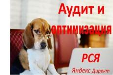 Рекламный аудит, разбор рекламной кампании 19 - kwork.ru