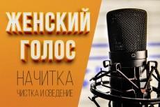 Озвучка женским голосом 11 - kwork.ru