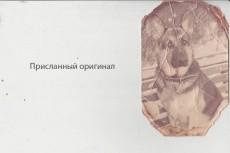 Подкорректирую вашу внешность на фото 9 - kwork.ru