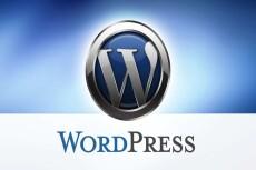 Создам сайт на wordpress с любой темой, установлю необходимые плагины 40 - kwork.ru