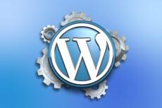 Создам сайт на WP, поставлю тему и нужные плагины 7 - kwork.ru