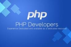 Написание, доработка, изменение скриптов на PHP любой сложности 20 - kwork.ru