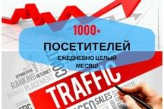 14000 уникальных посещений на ваш сайт в течение недели 28 - kwork.ru