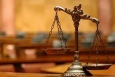 Ведение дела в суде любой юрисдикции, в т.ч. удаленно 5 - kwork.ru