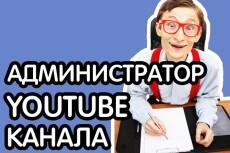 Провожу консультации по Skype. Продвижение канала, привлечение трафика 10 - kwork.ru
