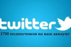 1700 подписчиков на Ваш аккаунт в Twitter 5 - kwork.ru