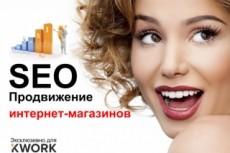 Поделюсь знаниями, отвечу на вопросы о SEO (и др. темы) 23 - kwork.ru