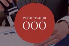 Подготовлю документы для внесения изменений в сведения об ООО, ИП 3 - kwork.ru