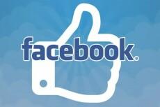 Facebook - 5000 Лайков на фото, посты 9 - kwork.ru