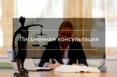 Консультация по уголовным и административным делам 20 - kwork.ru