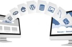 Помогу с сайтом на Wordpress, Diafan CMS 29 - kwork.ru
