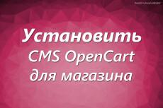 Установка и настройка CMS OpenCart для будущего интернет-магазина 10 - kwork.ru
