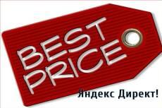 Профессиональная настройка Яндекс. Директ + 1 неделя ведения бесплатно 12 - kwork.ru