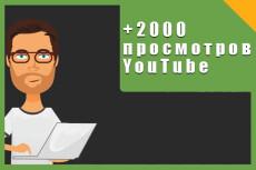 2000 реальных Youtube просмотров с гарантией 5 - kwork.ru