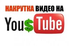 6000 просмотров видео на YouTube 8 - kwork.ru