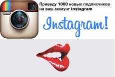 500 целевых подписчиков в инстаграм, Instagram. Без ботов и программ 5 - kwork.ru