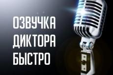 Озвучиваю голосовые приветствия, IVR, презентации, детские книги 13 - kwork.ru