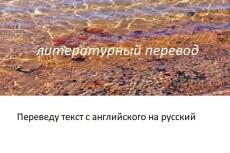 Сделаю качественный литературный перевод с английского на русский 14 - kwork.ru