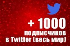 1000 подписчиков в Twitter. Безопасно. Офферы 23 - kwork.ru