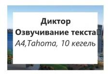 Озвучание, дикторский мужской голос 13 - kwork.ru