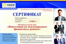 сделаю карту на сайт 9 - kwork.ru